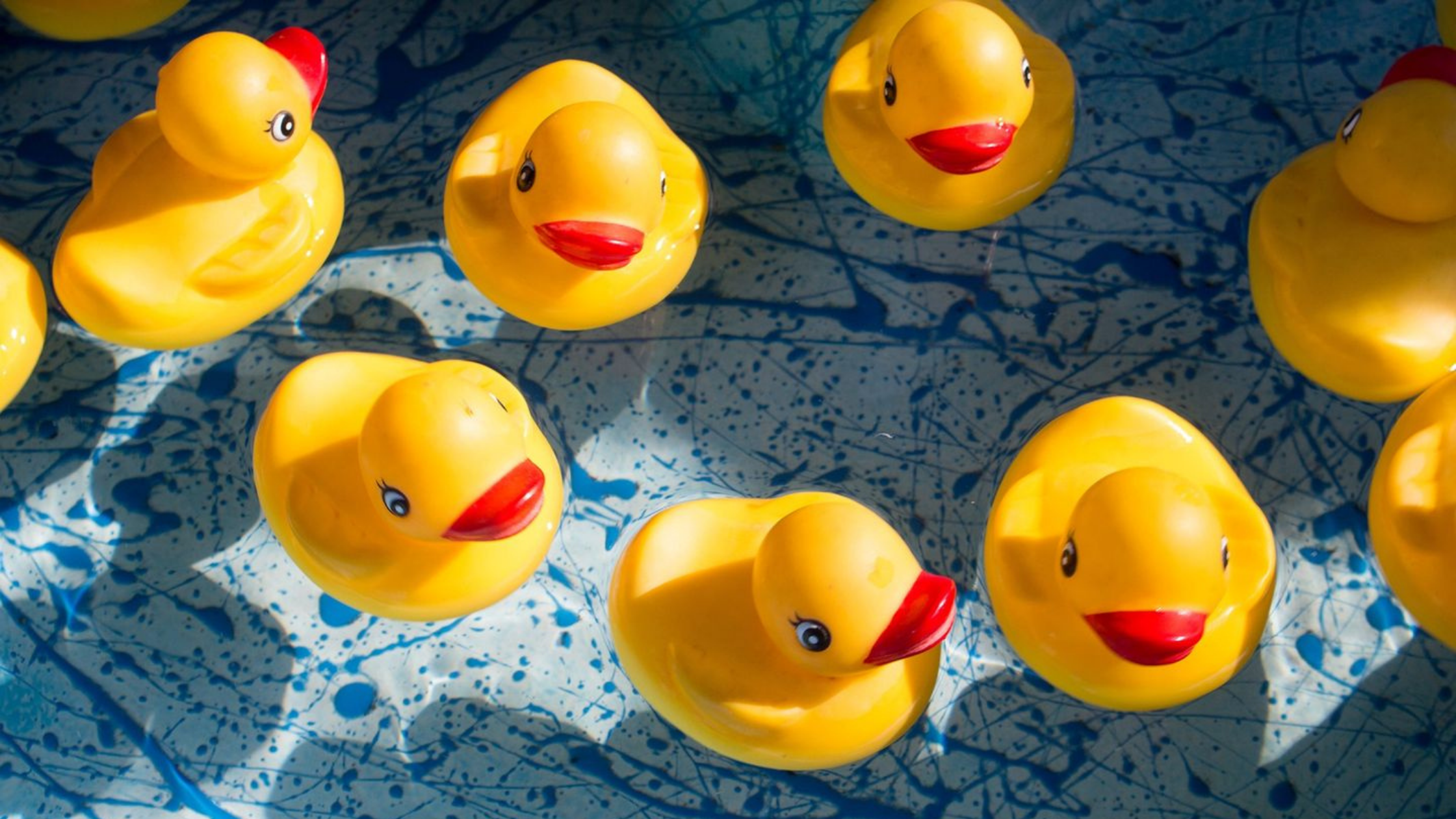 Soutenez l'association TGB à la Duckrace